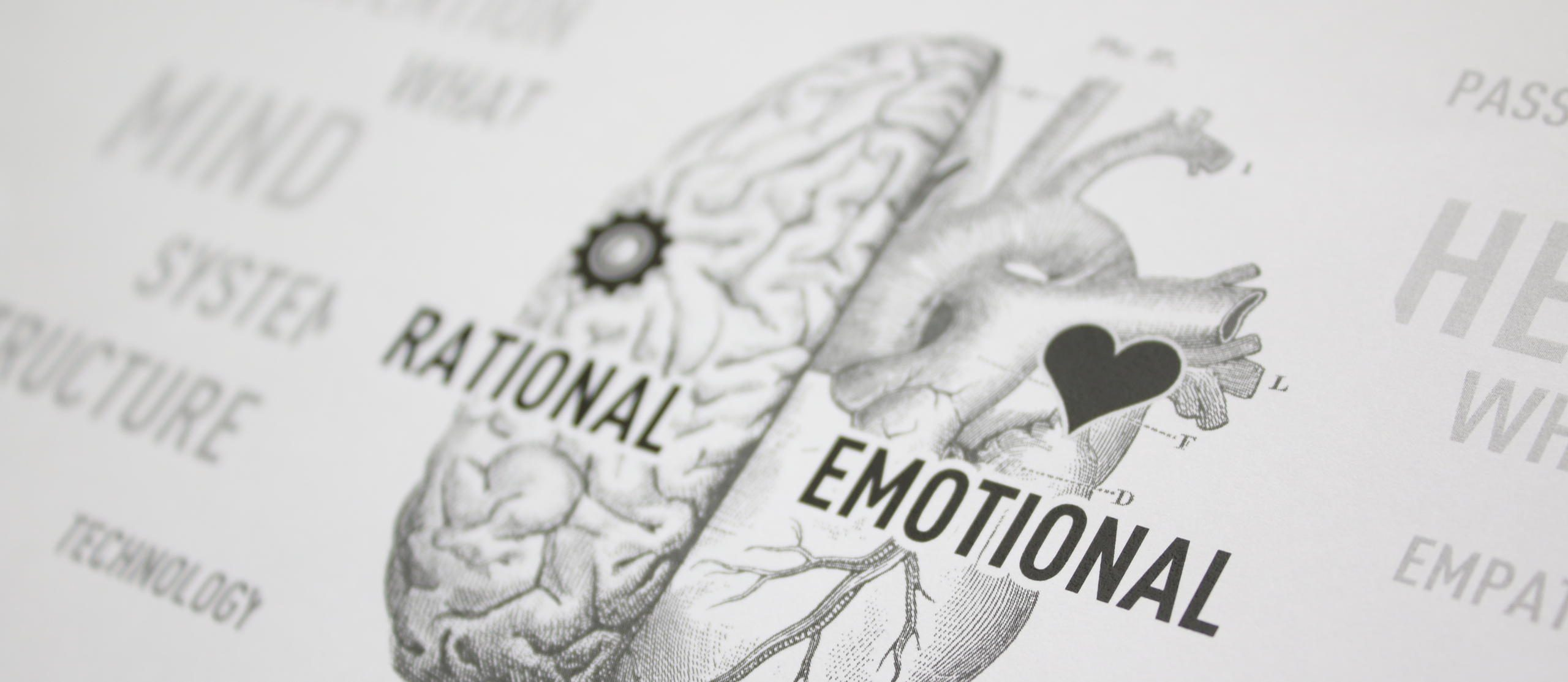 rational and emotional thought